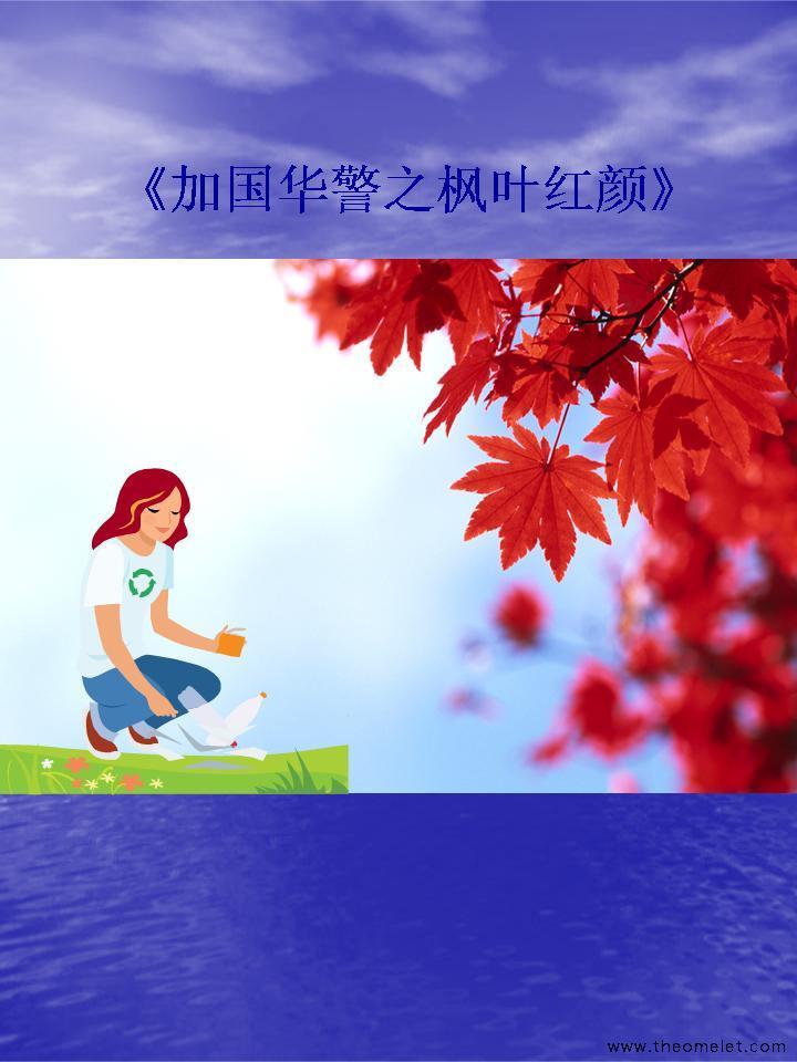 加国华警之枫叶红颜